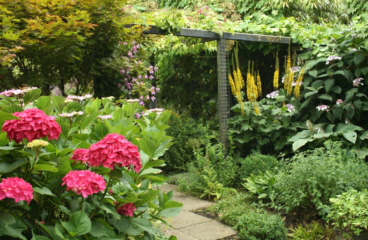 groene tuin is springlevend tuincursus online